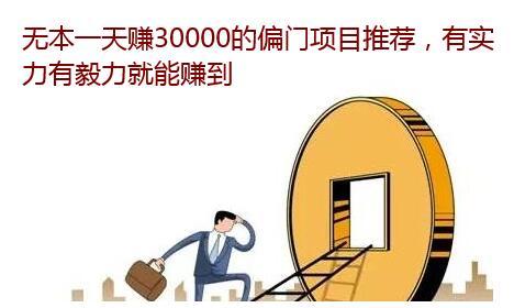 无本一天赚30000的偏门赚钱项目推荐,日赚3万元超轻松