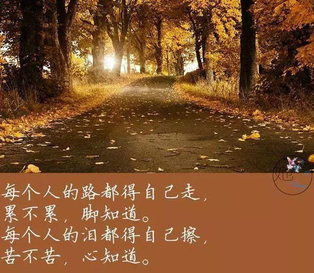 人生的路只能靠自己一步步走出来,别人是无法帮你完成的