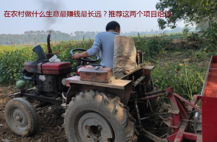 在农村做什么生意最赚钱最长远?推荐这两个项目给你