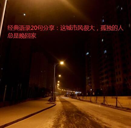 经典语录20句分享:这城市风很大,孤独的人总是晚回家